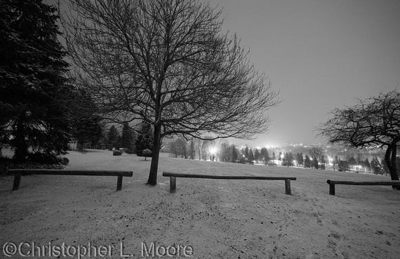 park at night in Winter with snow on ground